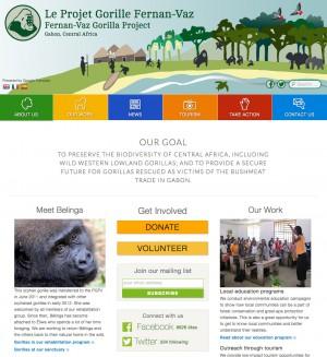 Projet Gorille Fernan-Vaz screenshot